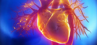 Do You have symptoms of Angina-Part -2