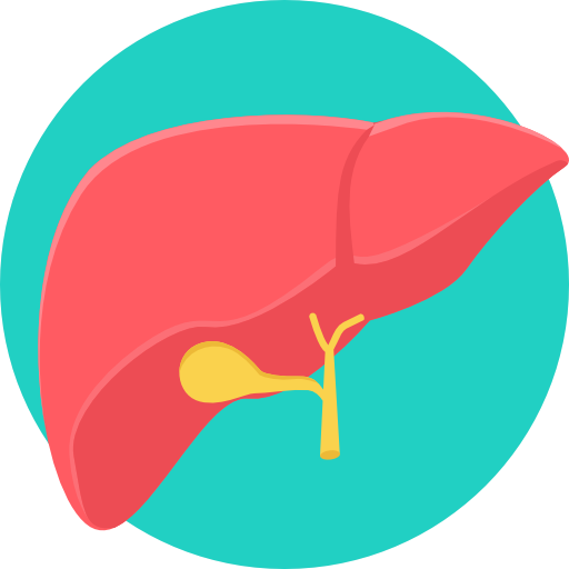 Liver and Pancreatic Surgery
